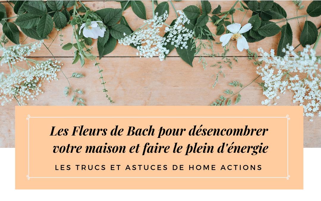 Les Fleurs de Bach pour faire le plein d'énergie